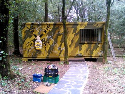 Graffiti araña